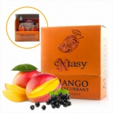 30/60ml FANTASI SHAKE - EXTASY MANGO BLACKCURRANT